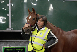 Poespass of Karin Boulanger with Pierre Arnould who is the groom, vet and chef d'equipe for the endurance horses of Belgium <br /> Alltech FEI World Equestrian Games - Kentucky 2010<br /> © Dirk Caremans