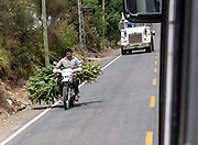 A motorcycle carrying corn stalks blocks truck on busy road, in Peru, South America.