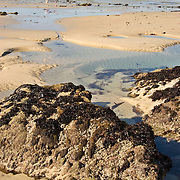 Asilomar Beach in Monterey, California