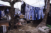 Central America, Honduras, Tegucigalpa. Devastation in the aftermath of Hurricane Mitch. High winds and flooding. Pig and jeans hanging up to dry amongst the ruined homes. Houses and Infrastructure destroyed.