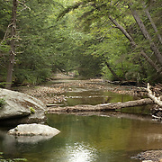 Oliverian Brook runs from the side of Mt. Passaconaway to the Swift River, in the White Mountain National Forest, New Hampshire, USA