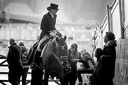 Barbancon Mestre Morgan, ESP, Sir Donnerhall II Old<br /> Jumping Mechelen 2018<br /> © Hippo Foto - Sharon Vandeput<br /> 28/12/18