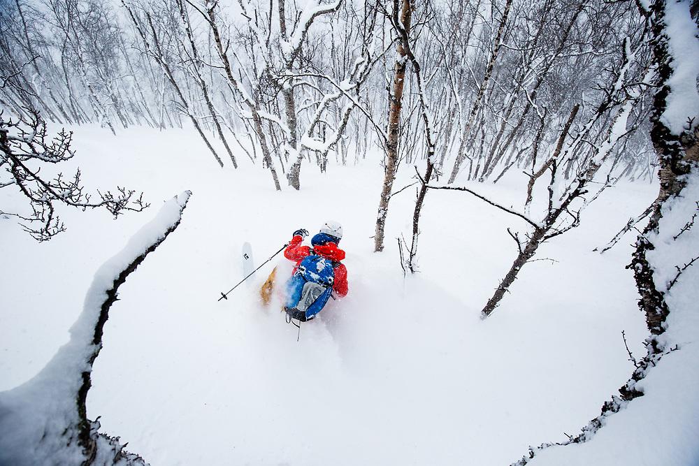 Antte Lauhamaa enjoying a perfect day of powder skiing at Kaltfjord, Norway.