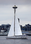 A sailboat aptly named Neptune's Car blends in with Elliott Bay's urban scenery, as viewed from West Seattle. (Ken Lambert / The Seattle Times)
