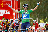 Arrival, Alejandro Valverde (ESP - Movistar) green jersey, winner, during the UCI World Tour, Tour of Spain (Vuelta) 2018, Stage 8, Linares - Almaden 195,1 km in Spain, on September 1st, 2018 - Photo Luca Bettini / BettiniPhoto / ProSportsImages / DPPI