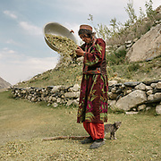 Old woman winnowing sweet pea. The traditional life of the Wakhi people, in the Wakhan corridor, amongst the Pamir mountains.