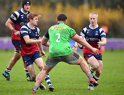 Reiss Cullen of Bristol Bears United receives the ball - Mandatory by-line: Paul Knight/JMP - 02/12/2018 - RUGBY - Clifton RFC - Bristol, England - Bristol Bears United v Harlequins - Premiership Rugby Shield
