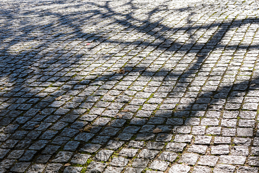 Shadows on geometric tiles form shapes and patterns of a tree on paving stones in Sintra, Portugal