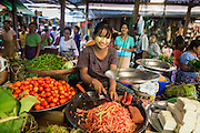 06 JUNE 2014 - IRRAWADDY DELTA,  AYEYARWADY REGION, MYANMAR: A woman sells vegetables in the market in Pantanaw, a town in the Irrawaddy Delta (or Ayeyarwady Delta) in Myanmar. The region is Myanmar's largest rice producer, so its infrastructure of road transportation has been greatly developed during the 1990s and 2000s. Two thirds of the total arable land is under rice cultivation with a yield of about 2,000-2,500 kg per hectare. FIshing and aquaculture are also important economically. Because of the number of rivers and canals that crisscross the Delta, steamship service is widely available.   PHOTO BY JACK KURTZ