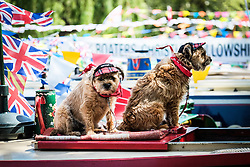 Pixie and Gyp dressed as traditonal bargees stand guard over their canal boat at the annual Canalway Cavalcade. Paddington Basin, London UK