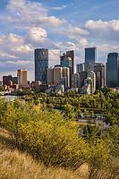 Sunnyside Bank Park & Downtown Calgary
