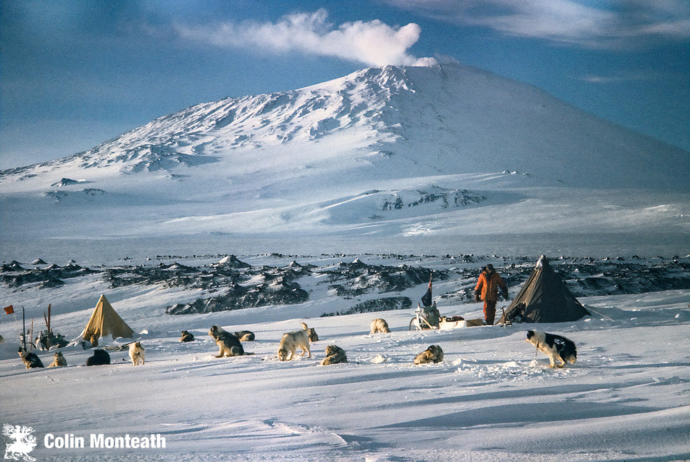Camping with dogs, Cape Evans, Erebus Volcano above.