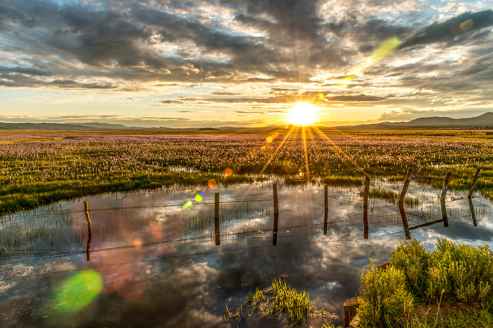 Last light from a prairie sunset along a sunken fence line on the Centennial Marsh near Hill City Idaho wetlands.  Licensing and Open Edition Prints.