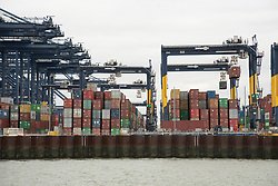 © Licensed to London News Pictures. 14/10/2021. Felixstowe, UK. The Port of Felixstowe has had to turn away ships from Asia because of a backlog of containers not being distributed due to the  shortage of HGV drivers. AP Moller-Maresk, the worlds largest container company has had to load containers onto smaller ships bound for the UK. This is having a disruptive effect as the shipping industry enters the pre-Christmas period of delivery with a possible shortage of Christmas goods being sold in the UK. Photo credit: London News Pictures