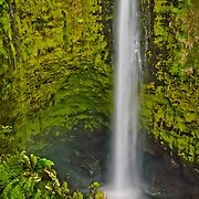 Lovely waterfalls and cascades abound amid the lush tropical greenery of Akaka Falls State Park, Big Island, Hawaii.