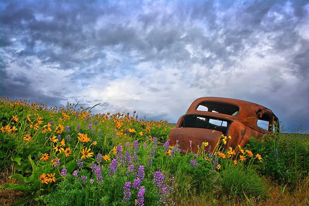 Dalles Mountain Ranch, Columbia Hills State Park, WA