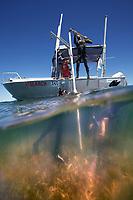 02/March/2013 Austraila. Shark Bay.<br /> Científicos de la Universidad de Western Australia, UWA toman muestras en una pradera de posidonia en Shark Bay.<br /> <br /> ©JOAN COSTA