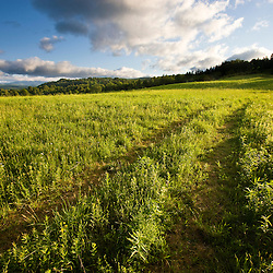 A farm road in Sabins Pasture in Montpelier, Vermont.