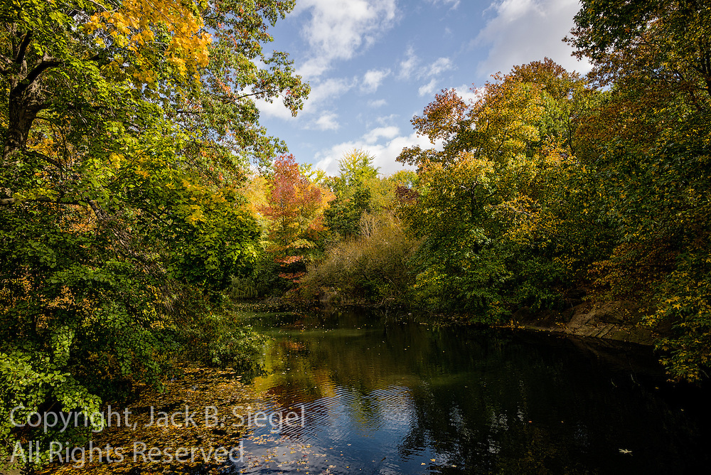 Central Park Pond in Fall