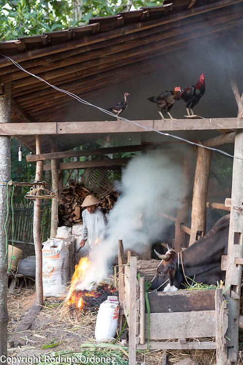 Suparjiyem's husband Kaspi, 58, burns grass at a yard behind their home in Wareng, Wonosari subdistrict, Gunung Kidul district, Yogyakarta Special Region, Indonesia.