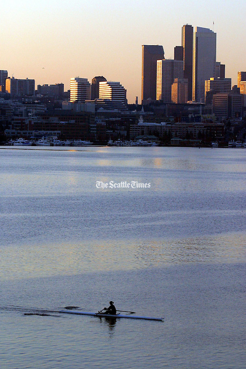 Rower on Lake Union early in the morning.  Rowers from various rowing clubs take advantage of early morning calm water to exercise and enjoy the scenery. (Greg Gilbert / The Seattle Times)