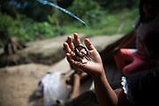 La petite Jade a attrapé un scorpion, à qui elle a coupé le dard et à qui elle a attaché une corde qui fait office de laisse. Dans l'Amazonie, les scorpions deviennent les animaux de compagnie. <br /> <br /> Little Jade caught a scorpion, whose sting she cut and to whom she tied a rope that acts as a leash. In the Amazon, scorpions become pets.