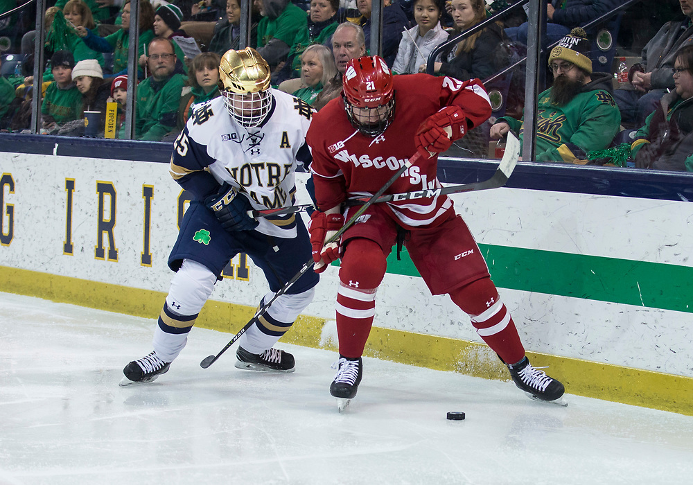 February 15, 2019:  Wisconsin defenseman Ty Emberson (21) and Notre Dame forward Dylan Malmquist (25) battle for the puck during NCAA Hockey game action between the Wisconsin Badgers and the Notre Dame Fighting Irish at Compton Family Ice Arena in South Bend, Indiana.  Wisconsin defeated Notre Dame 2-1.  John Mersits/CSM