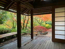 United States, Washington, Bellevue, Bellevue Botanic Garden