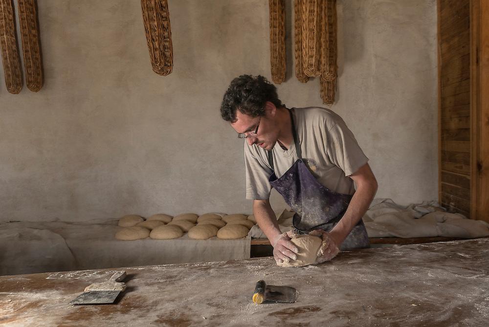 Le paysan boulanger Jérémie Boguais pétrit son pain bio à la main.<br /> Arrivé dans le Perche en 2014 au GAEC La Ferme de la Geveuse, il a décidé de produire à partir du blé de la ferme, un mélange de blé ancien et moderne destiné à la panification dans une pratique d'agriculture paysanne. Les  céréale sont moulues sur meule dans un moulin situé a coté de la ferme.Le pain est issu de levain naturel, il est pétri, divisé et façonné à la main puis cuit dans un four a bois dans l'atelier boulange.<br /> The peasant baker Jérémie Boguais kneads his organic bread by hand.<br /> Arrived in Perche in 2014 at GAEC La Ferme de la Geveuse, he decides to produce from the farm's wheat, a mixture of old and modern wheat intended for bread-making in a peasant practice. The cereals are ground on a mill in a mill located next to the farm. The bread is made from natural sourdough, it is kneaded, divided and shaped by hand and then baked in a wood oven in the bakery.