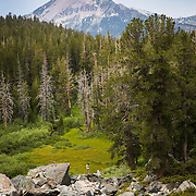The view of Mammoth Mountain as seen from near Emerald Lake.