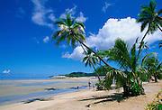 Musket Cove, Malololailai Island, Mamanuca Group, Fiji<br />
