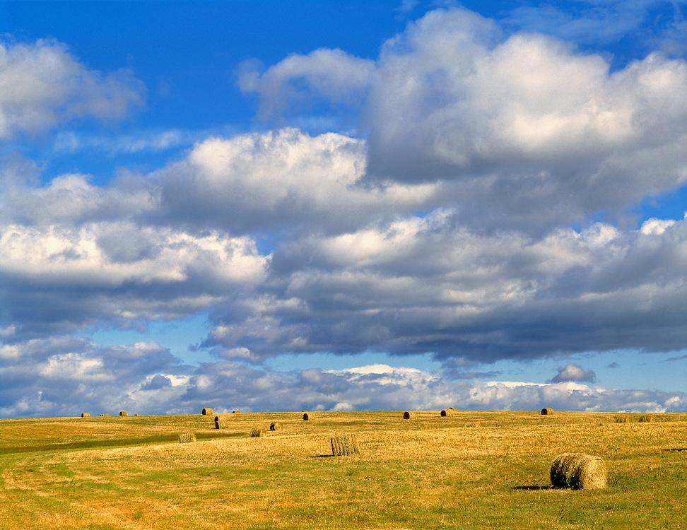 Golden hay bales in Morrill County, Nebraska.