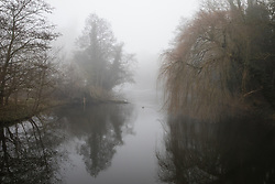 Denham, UK. 5 February, 2020. Morning mist lies on the river Colne at Denham Ford in Denham Country Park. Works planned in conjunction with the HS2 high-speed rail link are expected to include a Bailey bridge crossing just beyond the ancient alder tree on the left and willow tree on the right and a compound in ancient woodland to the right which forms part of a nature reserve. Environmental activists are occupying nearby trees in an attempt to prevent the work.