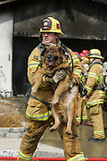 Ventura County Firefighter James Craig carries Leo from a burning house on Celia Court in Simi Valley on Feb. 26, 2007. The residents lost one dog to the fire, three others were saved.