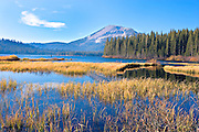 grass and reeds on the shore of Lake Mary Mammoth Lakes Basin, Mammoth, California