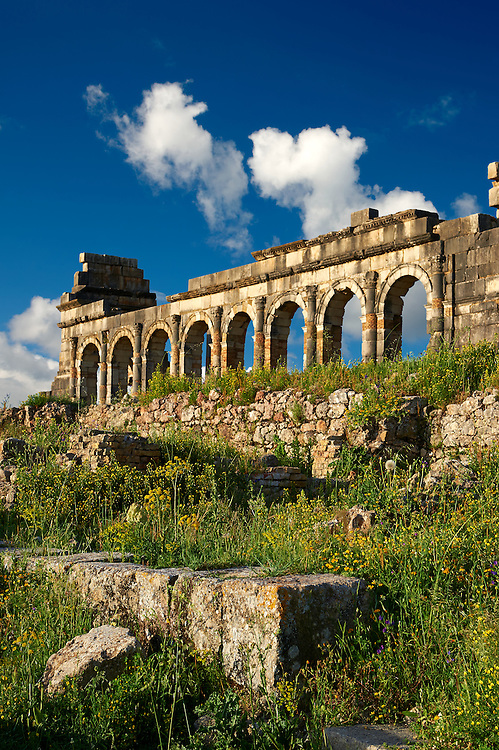 Exterior of the Basilica at Volubilis.  Completed during the reign of Macrinus in the early 3rd century, it is one of the finest Roman basilicas in Africa and is probably modelled on the one at Leptis Magna in Libya, Volubilis Archaeological Site, near Meknes, Morocco .<br /> <br /> Visit our MOROCCO HISTORIC PLAXES PHOTO COLLECTIONS for more   photos  to download or buy as prints https://funkystock.photoshelter.com/gallery-collection/Morocco-Pictures-Photos-and-Images/C0000ds6t1_cvhPo<br /> .<br /> <br /> Visit our ROMAN ART & HISTORIC SITES PHOTO COLLECTIONS for more photos to download or buy as wall art prints https://funkystock.photoshelter.com/gallery-collection/The-Romans-Art-Artefacts-Antiquities-Historic-Sites-Pictures-Images/C0000r2uLJJo9_s0