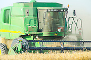John Deere Combine harvester wheat Harvesting close up