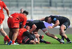 Alfie Petch of Exeter Braves in action- Mandatory by-line: Nizaam Jones/JMP - 22/04/2019 - RUGBY - Sandy Park Stadium - Exeter, England - Exeter Braves v Saracens Storm - Premiership Rugby Shield