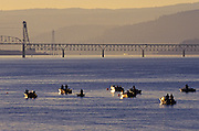 Image of sport fishing on the Columbia River near Hood River, Oregon, Pacific Northwest by Randy Wells