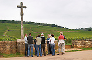 Vineyard. Group of visitors in front of La Romanee Conti Grand Cru. Vosne Romanee, Cote de Nuits, d'Or, Burgundy, France