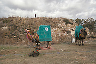 TURKEY, Izmir, Selçuk. Competing camels are kept outside the wrestling arena between their matches at the 35th annual Selçuk Camel Wrestling Festival. Armed police and military forces ensured the event took place without security threats.
