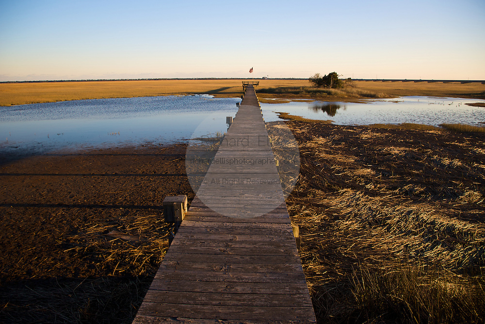 A dock in a saltwater marsh along the coast of South Carolina near Charleston.