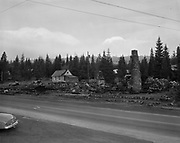 Y-501108-01.  Battle Axe Inn ruins after fire, Government Camp, Mt. Hood, November 8, 1950. (The fire that destroyed the inn happened the day before, November 7, 1950.)