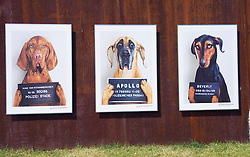 Outdoor art gallery in Berlin showing police line up of dogs