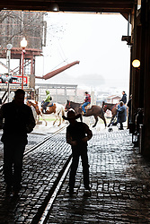 Silhouettes of young cowboy in pink hat walking through Stockyards Station,  Fort Worth Stockyards National Historic District, Fort Worth, Texas, USA.