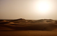 MEKNES - TAFILALET, MOROCCO - CIRCA APRIL 2017: Morning light  over the dunes of the Sahara Desert