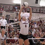 Gamecock volleyball player Courtney Koehler sets the ball during action in Columbia. ©Travis Bell Photography