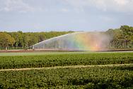 25-04-2020: Blesdijke, Weststellingwerf - Land besproeien met regenboog