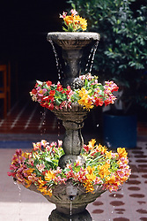 Water Fountain And Flowers