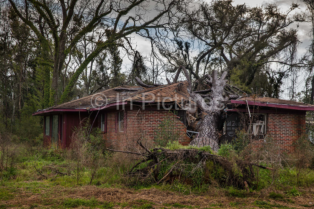House crushed by tree in the path of a hurricane on 5th March 2020 in Alford, Alabama, United States of America.